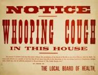 Whooping-Cough_11